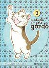 LA ABUELA Y SU GATO GORDO Nº03